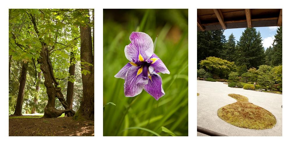 Japanese Garden, Portland, OR